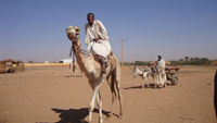 phoca_thumb_l_sudan 013 des